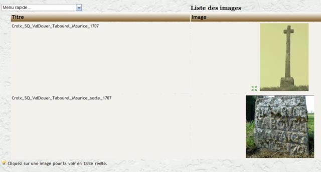 Genea_toutes_les_images (FILEminimizer)